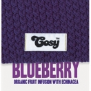 Picture of Blueberry - Cosy Tea 40g, Biotee